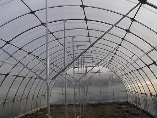 Теплицы и парники - важный элемент производства овощей в российских условиях
