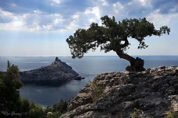 Экскурсии и активный отдых в Крыму