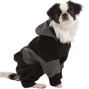 Как выбрать уютную одежду для собак